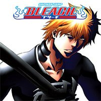 Bleach 357